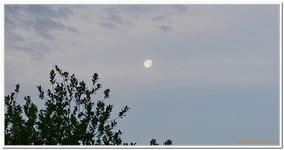 La Lune-0008