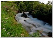 Les Ruisseaux de Coton-0017