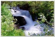 Les Ruisseaux de Coton-0020