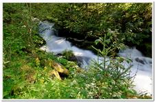 Les Ruisseaux de Coton-0023