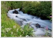 Les Ruisseaux de Coton-0028