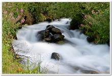 Les Ruisseaux de Coton-0029