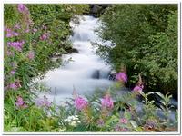 Les Ruisseaux de Coton-0030