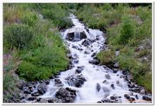 Les Ruisseaux de Coton-0035