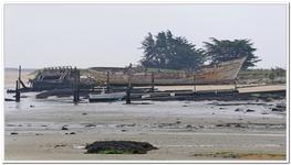 Cimetière à bateaux du Magouër-0036