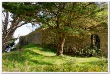 Maison en ruine à Port Louis-0010