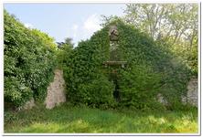 Maison en ruine à Port Louis-0011