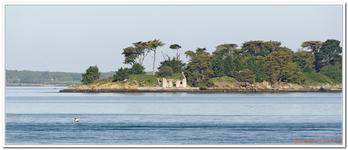 Autour des Iles Golfe Morbihan-0046