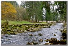 Source du Doubs-0012