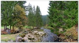 Source du Doubs-0015_180