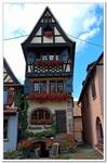 Dambach la ville-0018