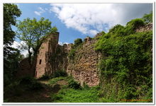 Les 3 Châteaux de Ribeauvillé-0012