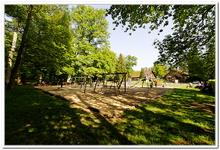 La Forêt du gros Chêne à Haguenau-0012
