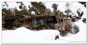 Le sentier des Roches à Lembach-0003