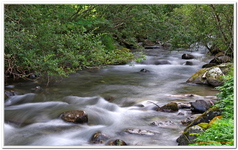 Les Ruisseaux de Coton-0015