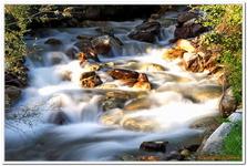 Les Ruisseaux de Coton-0005