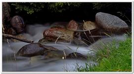 Les Ruisseaux de Coton-0013