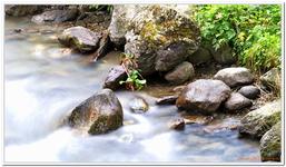 Les Ruisseaux de Coton-0014