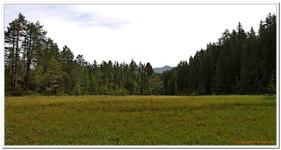 Randonnée Dreiländer-grenzstein AR-0021