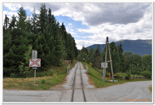 Dampfzugfahrt Taurachbahn-0016