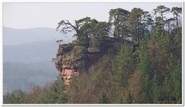Der Altdahn-Grafendahn-Tannstein-0011