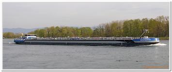 Le long du Rhin-0031